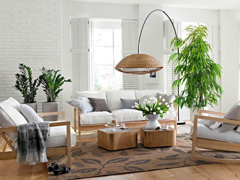 Комнатные растения, как часть дизайна квартиры